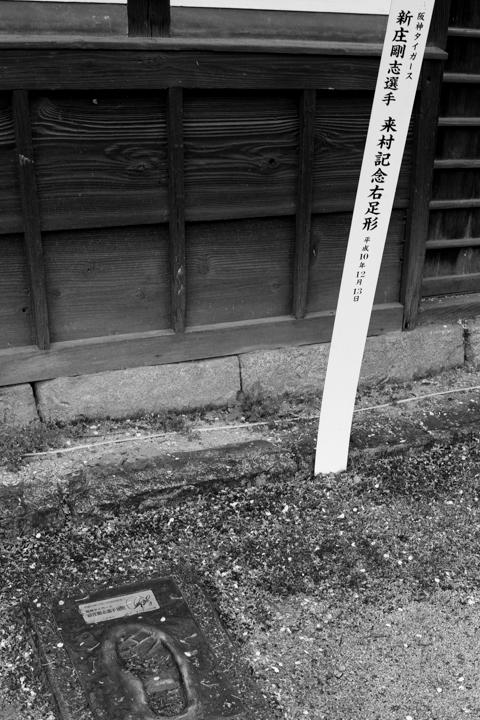 新庄村 (2 - 3)