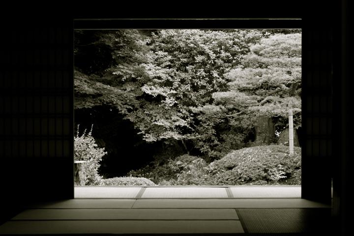 紫陽花寺 (1 - 7)