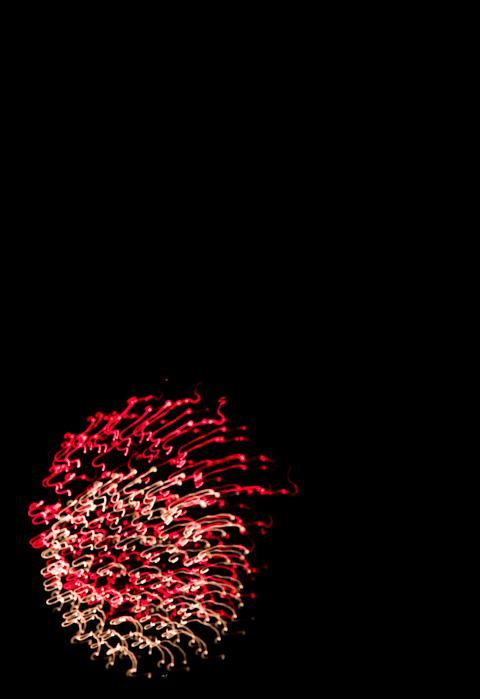 2014がいな祭り (3 - 5)