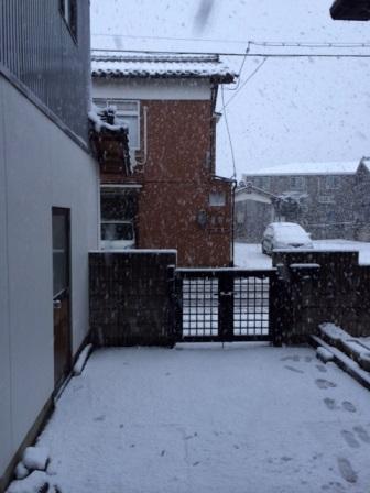 ブログ用雪