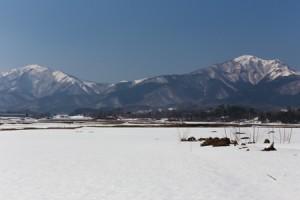 2014年3月雪景色 (8 - 10)