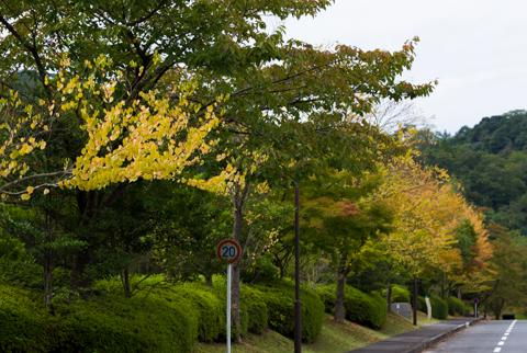 秋の入り口 (1 - 3)